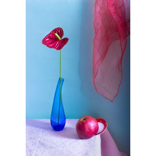 """Aušros Pečiūrienės Foto Paveikslas ant drobės """"Natiurmortas su raudona gėle"""""""